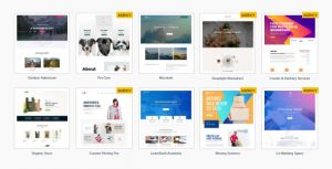 Astra Premium Sites 2.3.9 Nulled - Ready to Import Starter Websites